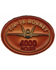 Hornet hours -4000 shaded
