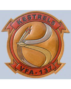 VFA 137